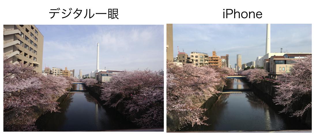 デジタル一眼レフカメラの広角レンズ・単焦点レンズの魅力、iPhoneとの違い