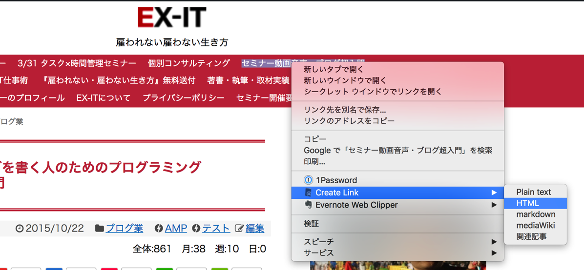 EX IT 17