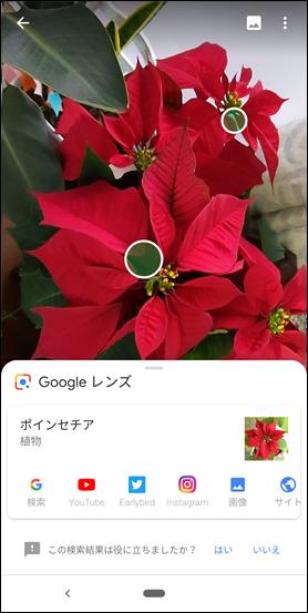 Screenshot_20181210-075647