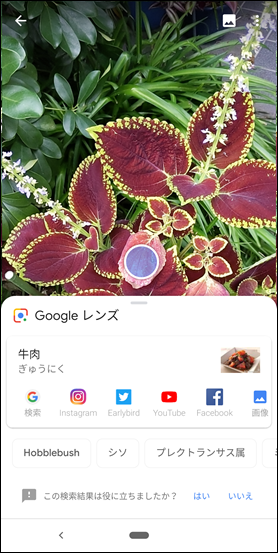 Screenshot_20181210-080144