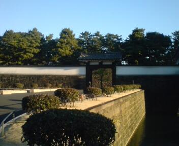 Newtype税理士 井ノ上陽一のブログ|-20081231075100.jpg