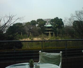 Newtype税理士 井ノ上陽一のブログ|-20090213112140.jpg