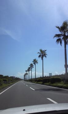 夏休み日記 by Twitter